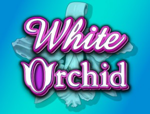 white_orchid_onlinecasinobonus