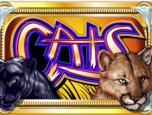 cats_ocb